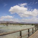 Natural Park of El Fondo