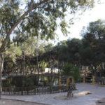 Reina Sofía Park